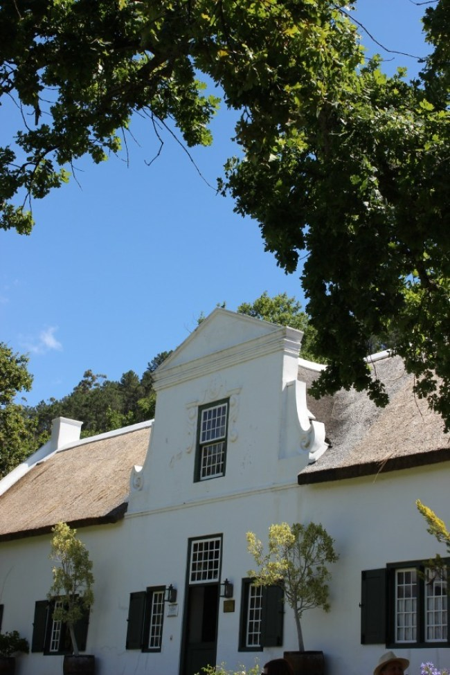Rickety Bridge Winery in the Cape Winelands, South Africa