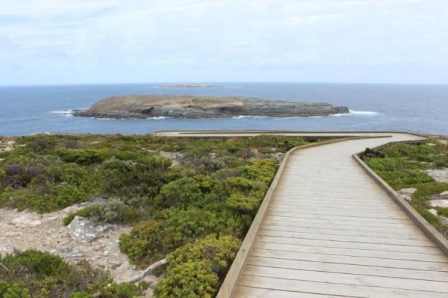 Cape Du Couedic boardwalk on Kangaroo Island
