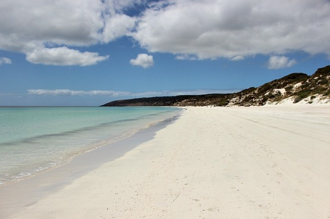 Emu Bay beach on Kangaroo Island