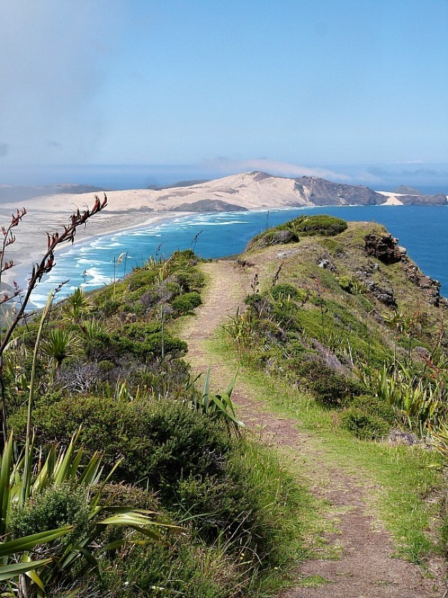 My 2018 Travel Bucket List - revisit Cape Reinga in Northland New Zealand