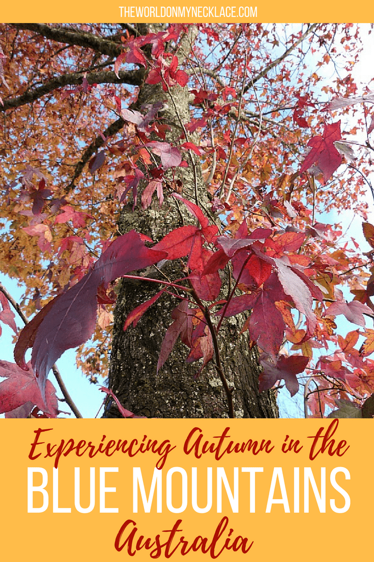 Experiencing autumn in the Blue Mountains of Australia