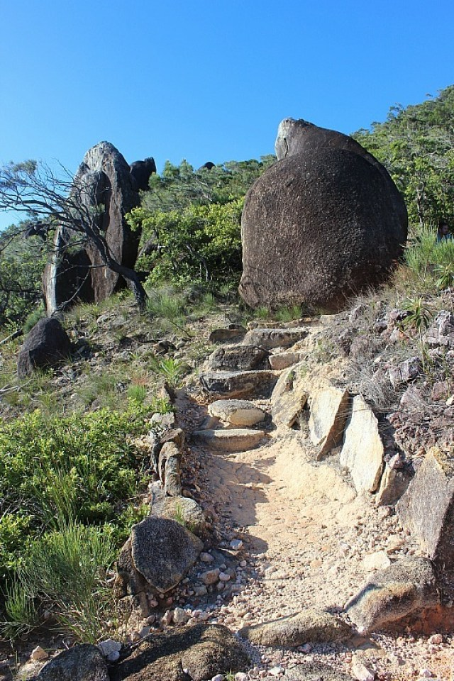 Hike to Summit on Fitzroy Island