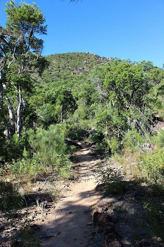 Hiking to Fitzroy Island summit