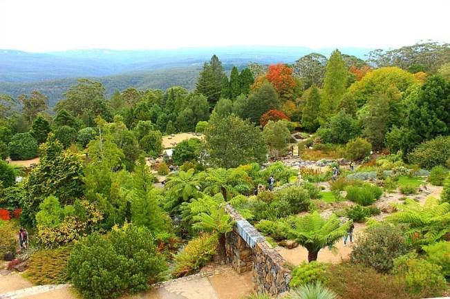 Mount Tomah Botanical Gardens in the Blue Mountains of Australia