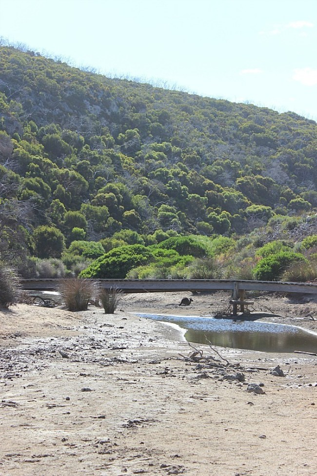 Ravine des Casoars dry riverbed on Kangaroo Island