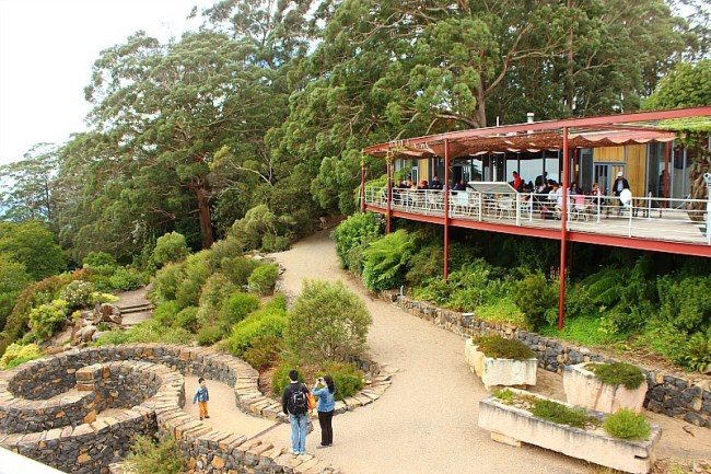 Visitor Centre at Mount Tomah Botanical Gardens in the Blue Mountains of Australia