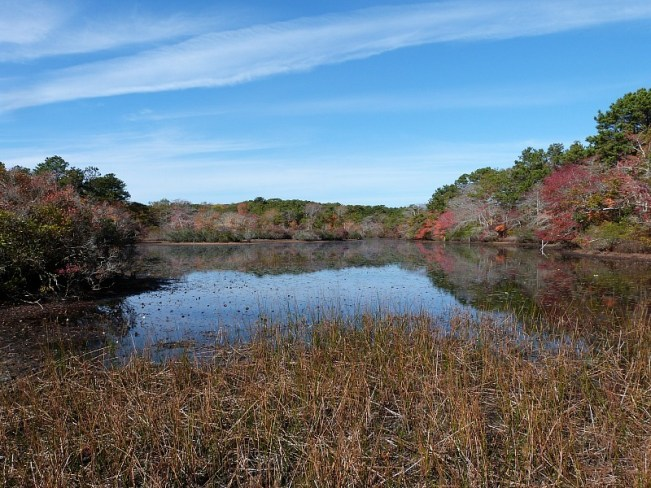 Lake in Cape Cod National Seashore near Provincetown - one of the best small towns in Massachusetts