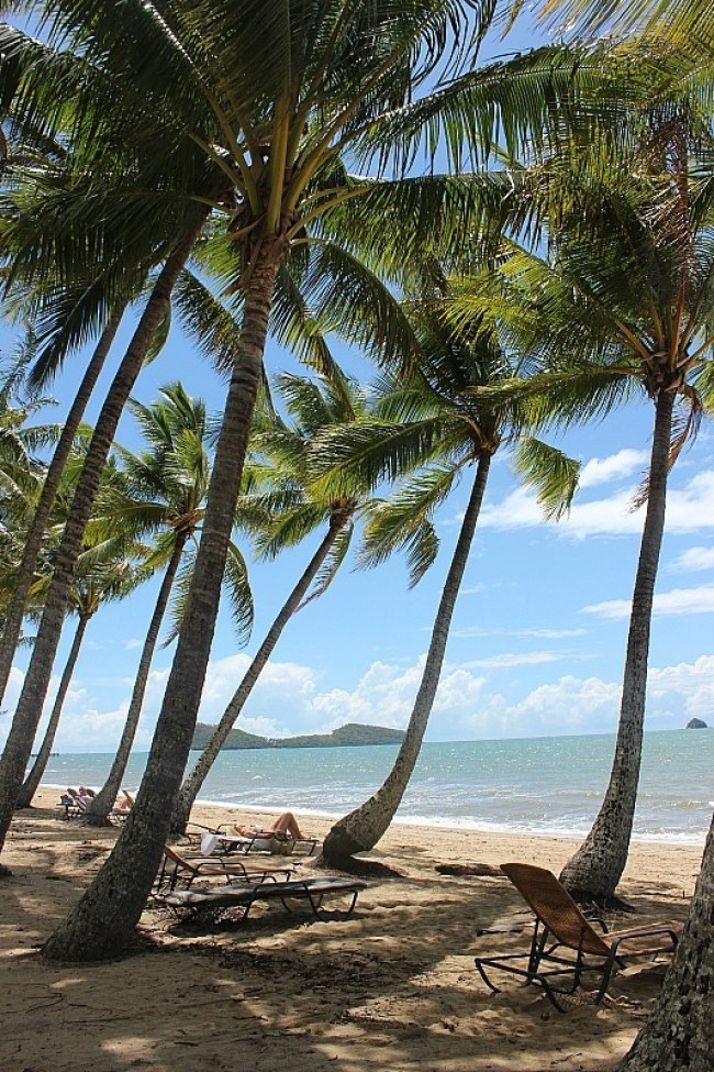 Palm Cove north of Cairns Australia