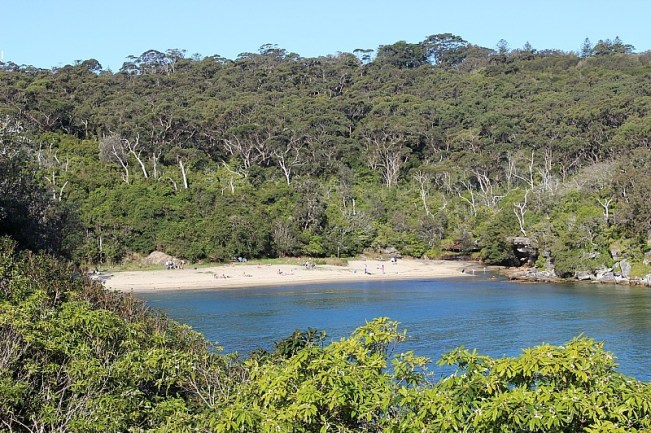 Collins Beach on Manly North Head walk - one of the best Sydney walks