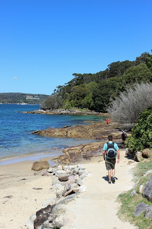 Forty Baskets beach on Manly to Spit Bridge Hike - one of the best Sydney walks