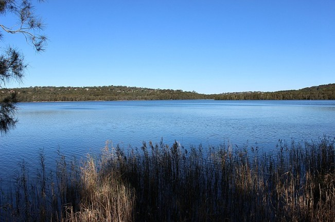 Narrabeen Lake Loop - one of the best Sydney Walks