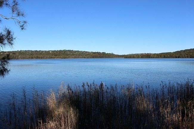 Narrabeen Lake Loop - one of the best Sydney Walks