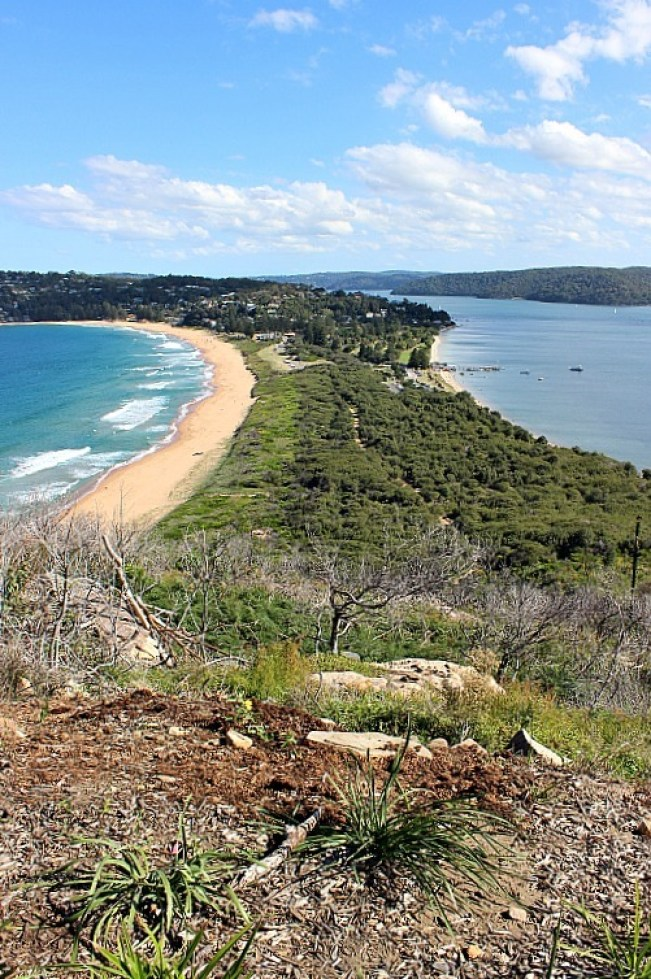 View from Barrenjoey Lighthouse - one of the best Sydney walks