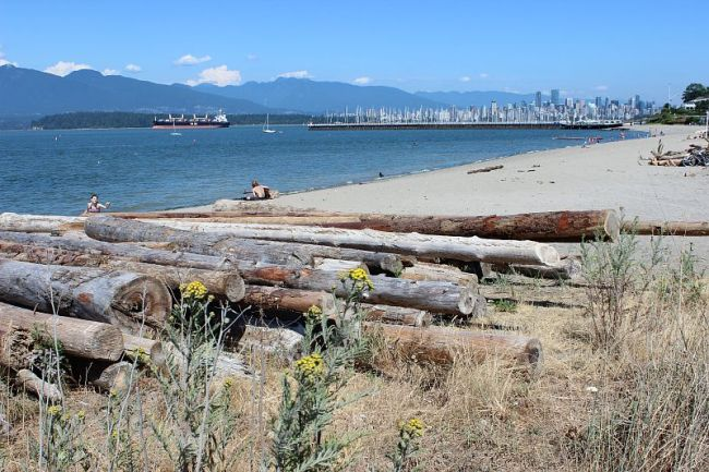 Soaking up the sun on Jericho Beach in Vancouver during month one of digital nomad life