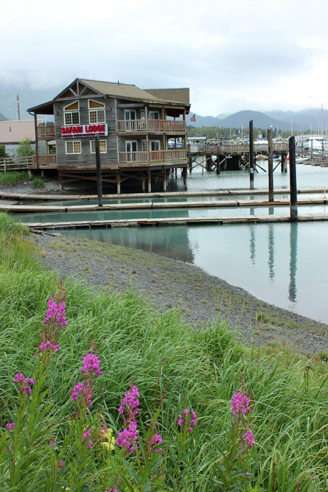 The harbour in Seward, Alaska