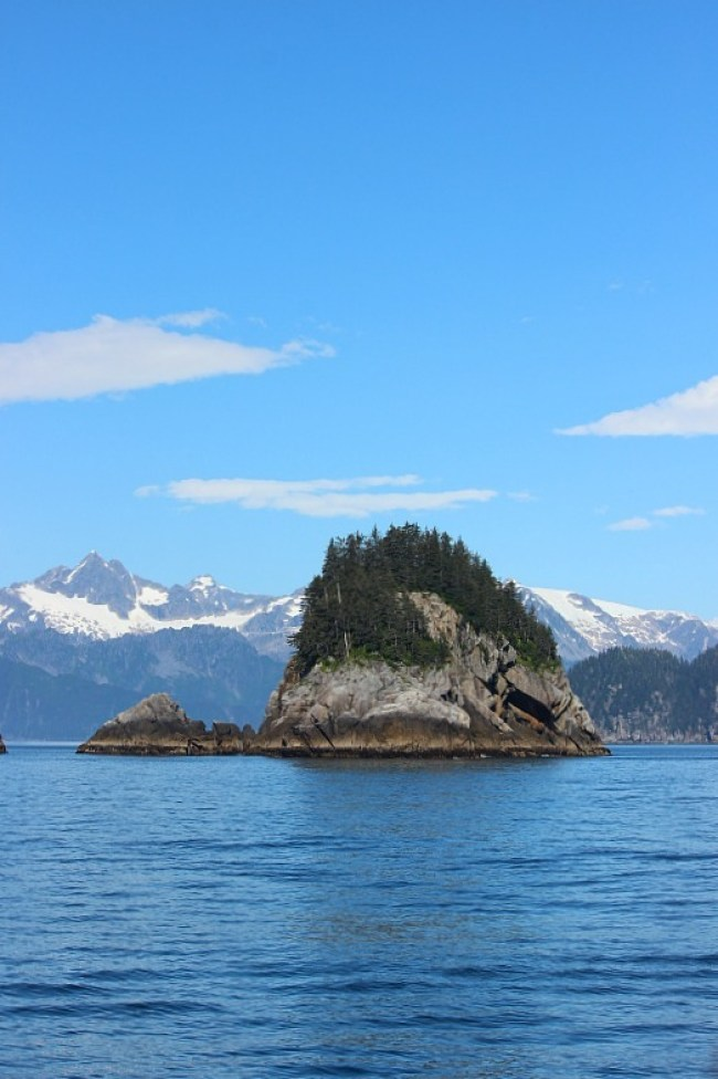 Small island in Kenai Fjords National Park in Alaska