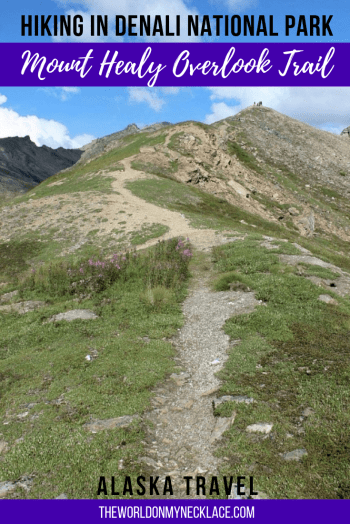 Hiking the Mount Healy Overlook Trail in Denali National Park