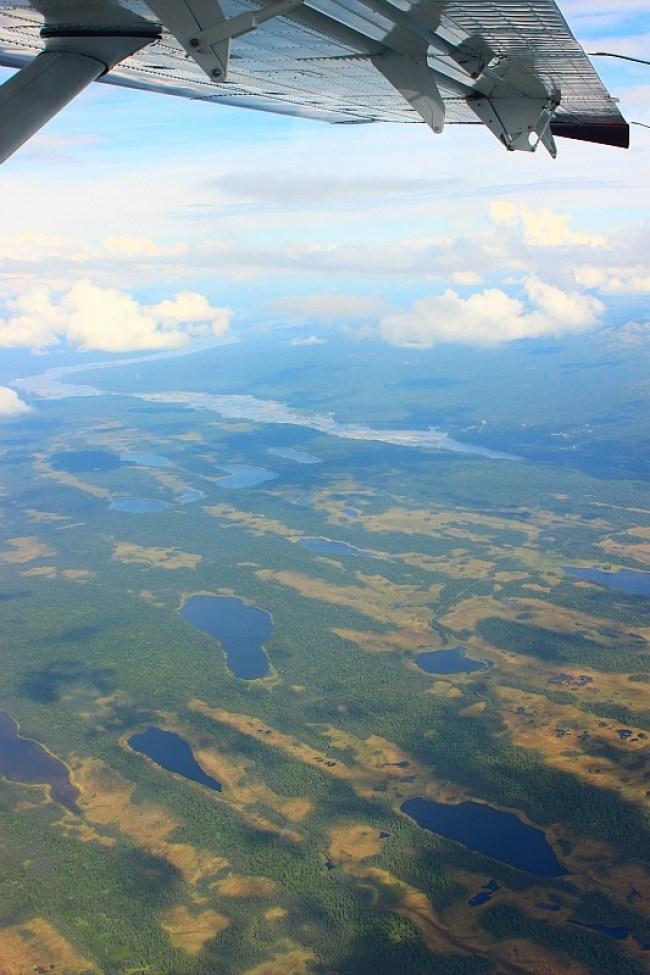 Marshland near Talkeetna from a Denali Flightseeing Tour
