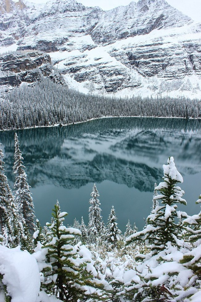 Lake O'Hara after snow fall on way back from Abbot Pass Hut