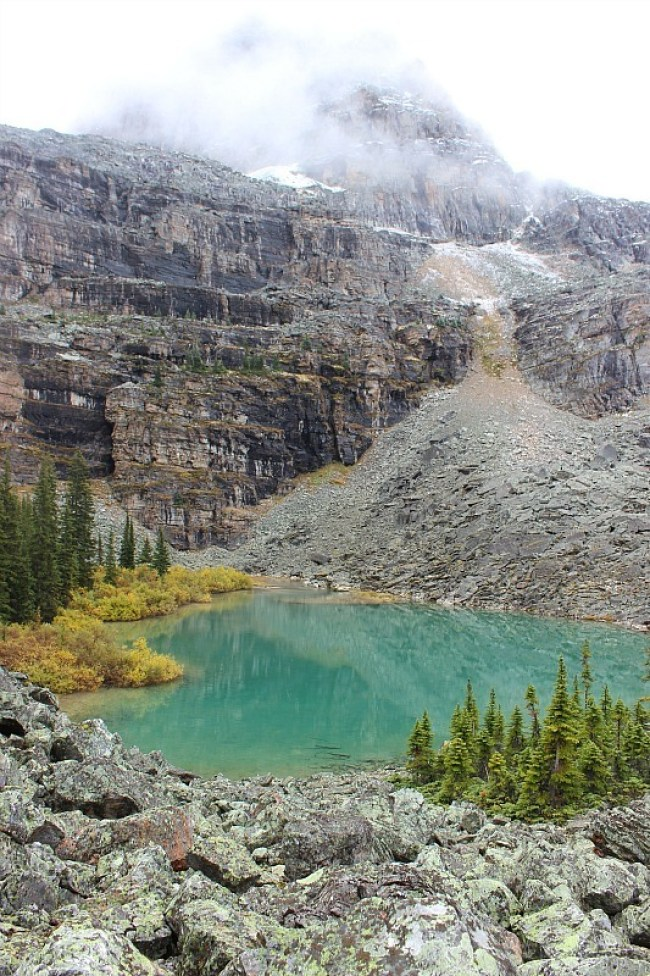 Lake in Lake O'Hara area on the way to Abbot Pass Hut