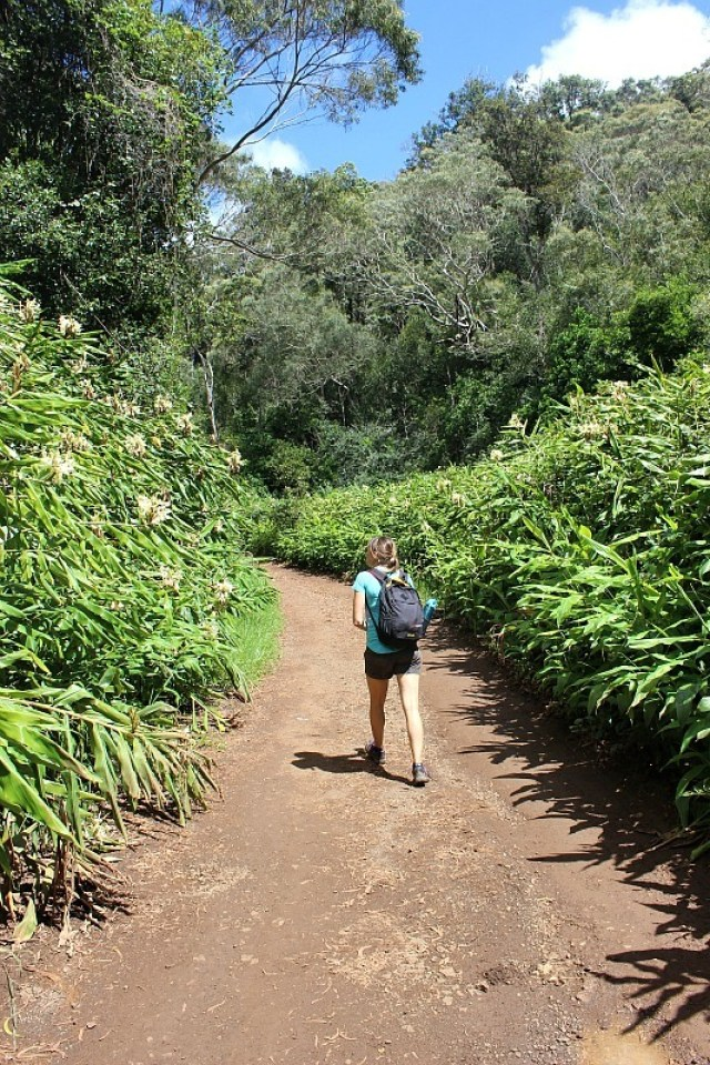 Canyon Trail at Waimea Canyon - Kauai Hiking Adventures