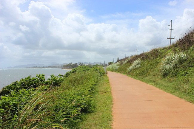 Pathway to Kealia Beach on Kauai, the Garden Island