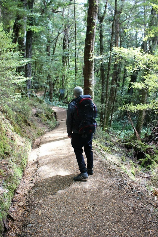 Hiking to Brod Bay on the Kepler Track