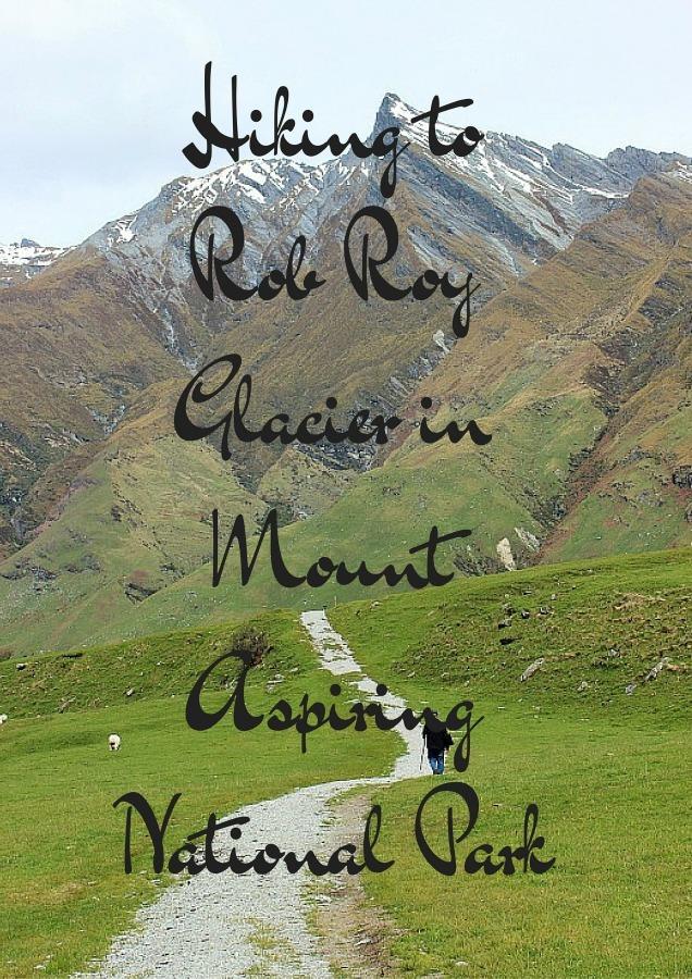 Hiking to Rob Roy Glacier in Mount Aspiring National Park