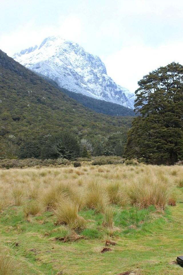 Valley around Iris Burn Hut on the Kepler Track