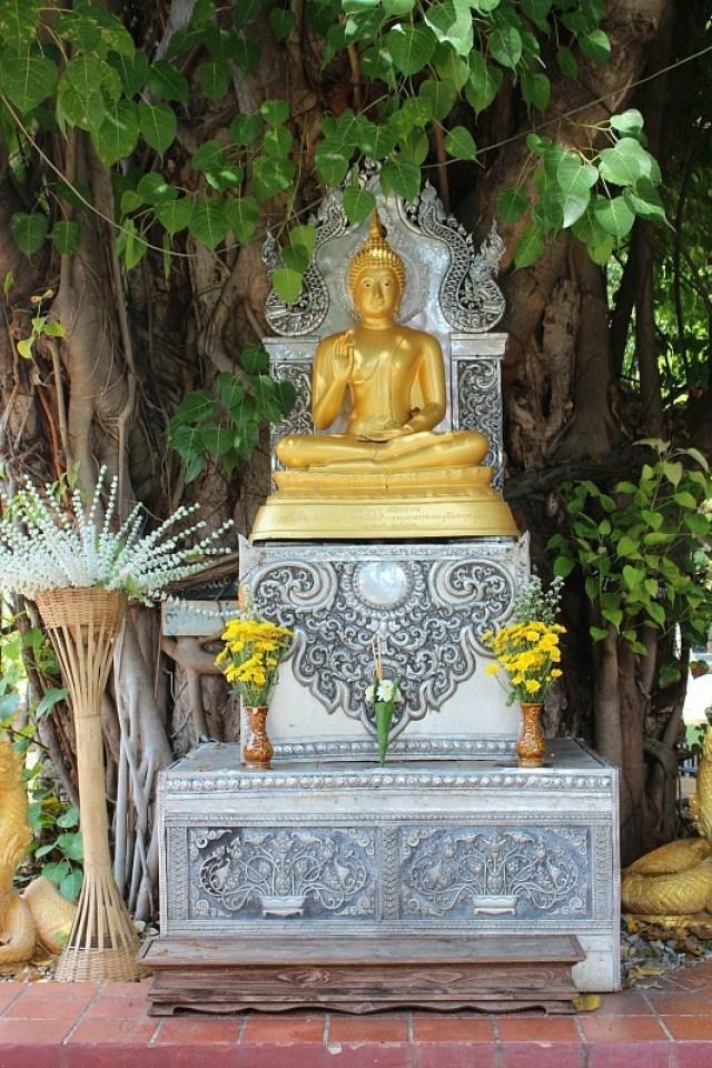Golden Buddha in Chiang Mai, Thailand