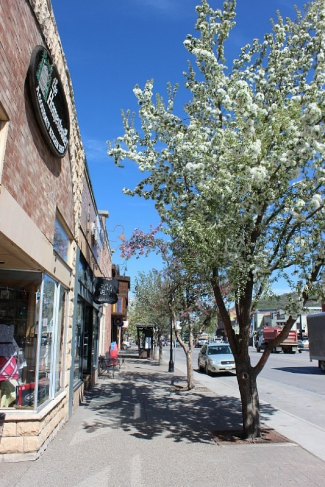 Spring in Steamboat Springs during month 11 of digital nomad life