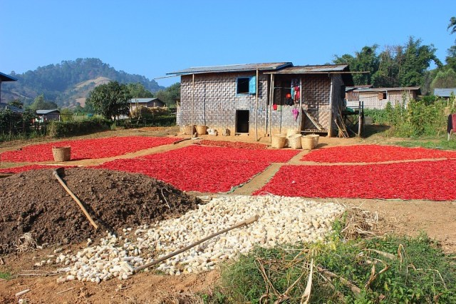 Chillis drying outside a house while trekking Kalaw to Inle Lake