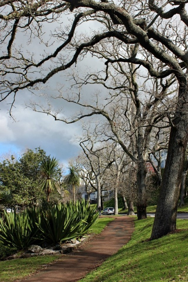 Auckland Domain, visited during month 14 of digital nomad life - The World on my Necklace
