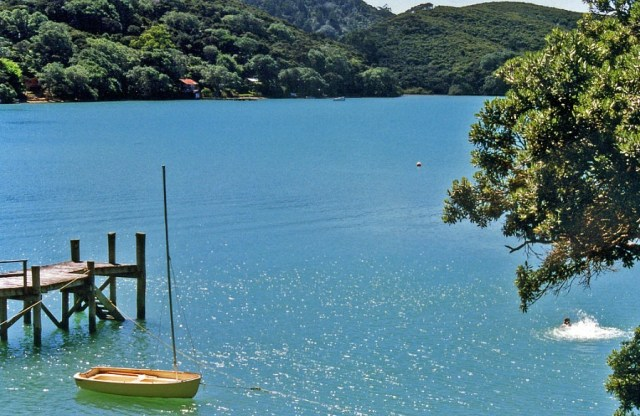 Kawau Island in New Zealand - one of the 10 best offbeat islands to visit