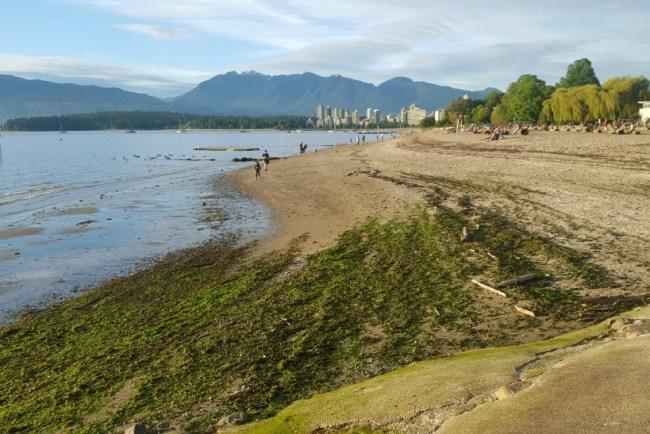 My 2018 Travel Bucket List - revisit Canada