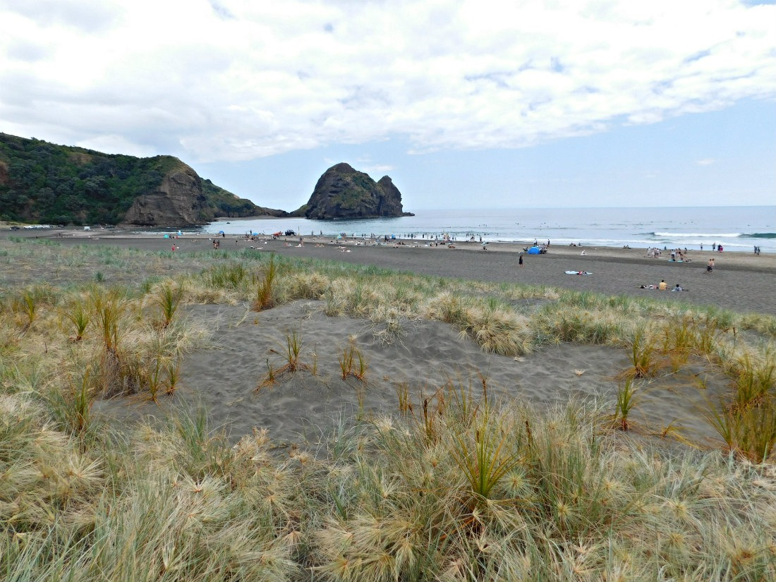 Swimming at Piha beach in Auckland during month thirty of digital nomad life