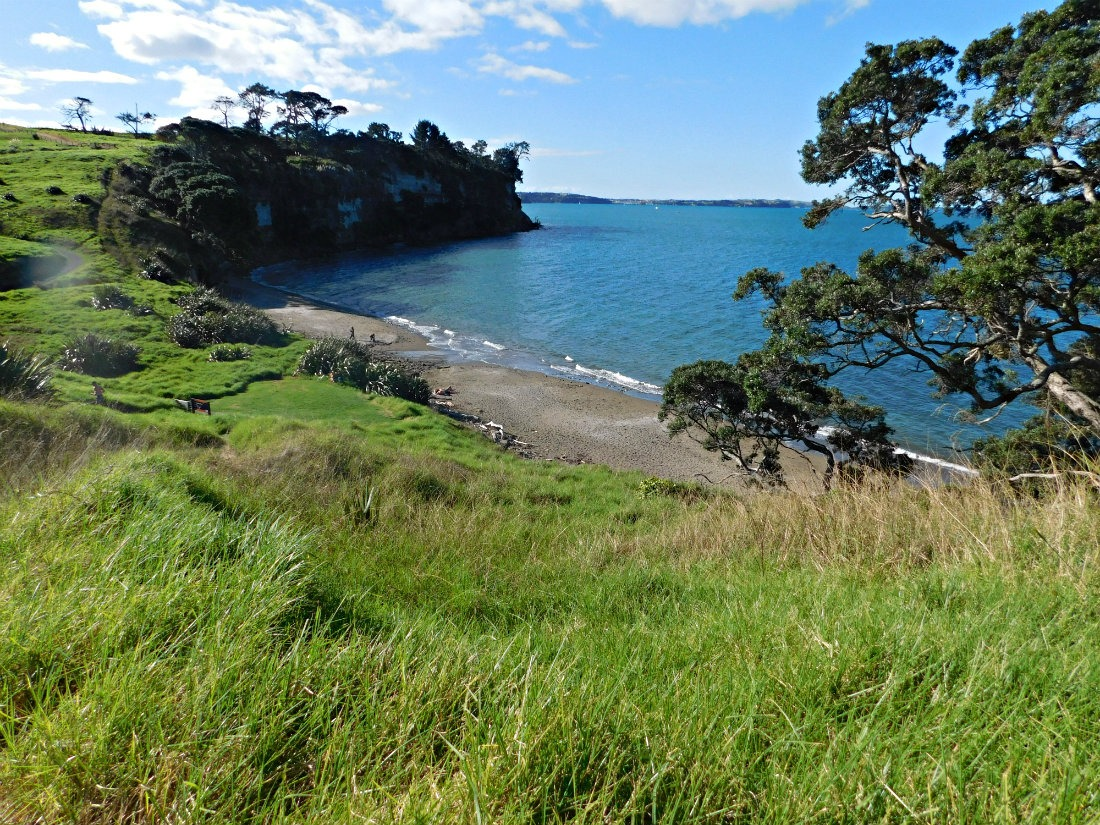Long Bay Regional Park in Auckland, New Zealand