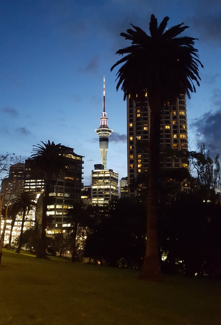 Auckland City at night - a highlight of month thirty six of digital nomad life