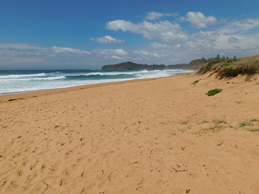Visiting the Northern Beaches in Sydney