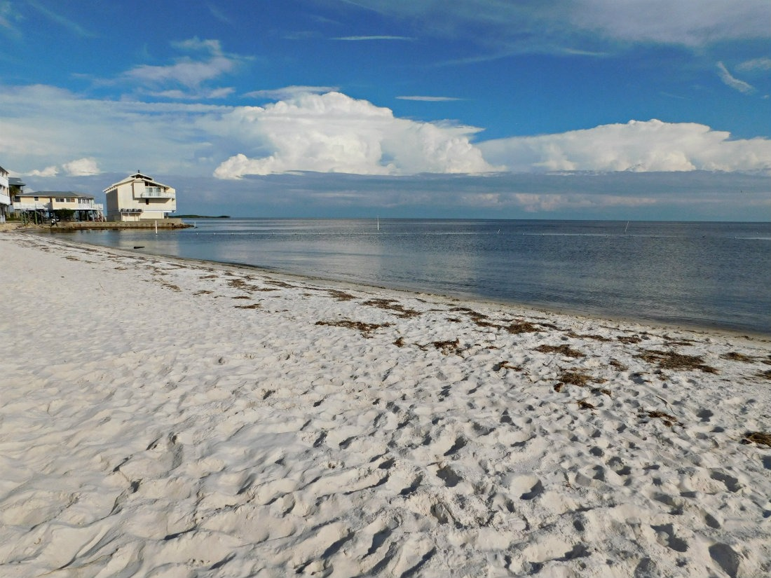 Cedar Key beach in North West Florida