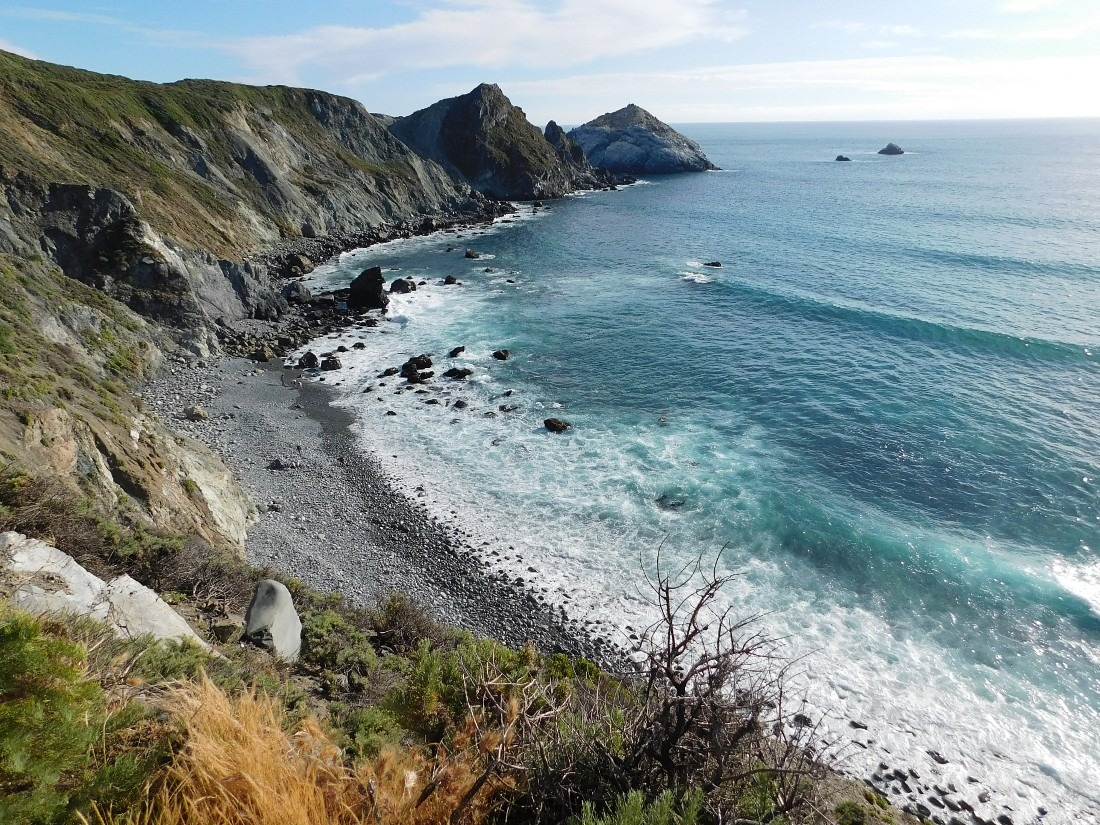 Beach in Big Sur, California