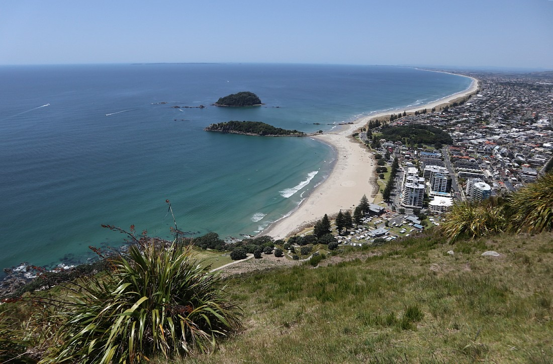 View from the top of the Mount in NZ