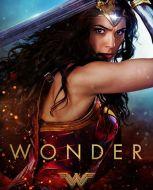 wonder-3