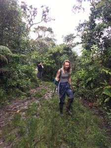 Bears in Peru, WildSide, World Wild Web