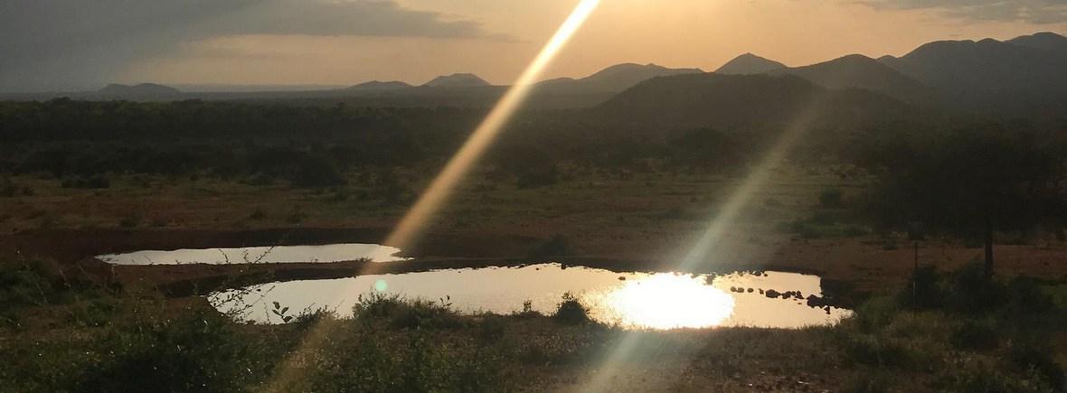wildlife in Tsavo, Kenya, WildSide, World Wild Web