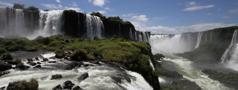 wildlife watching in Iguazu, wildside, world wild web
