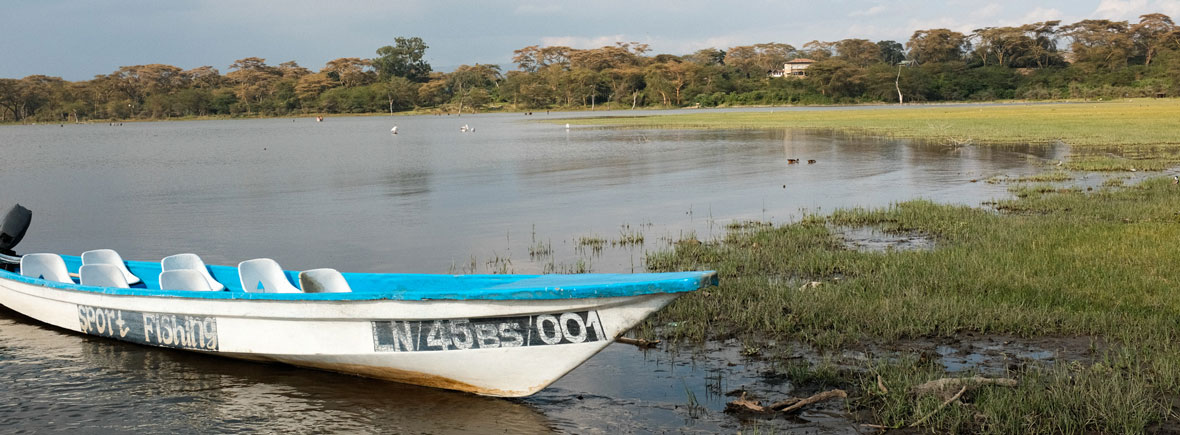wildlife in lake naivasha, wildside, world wild web