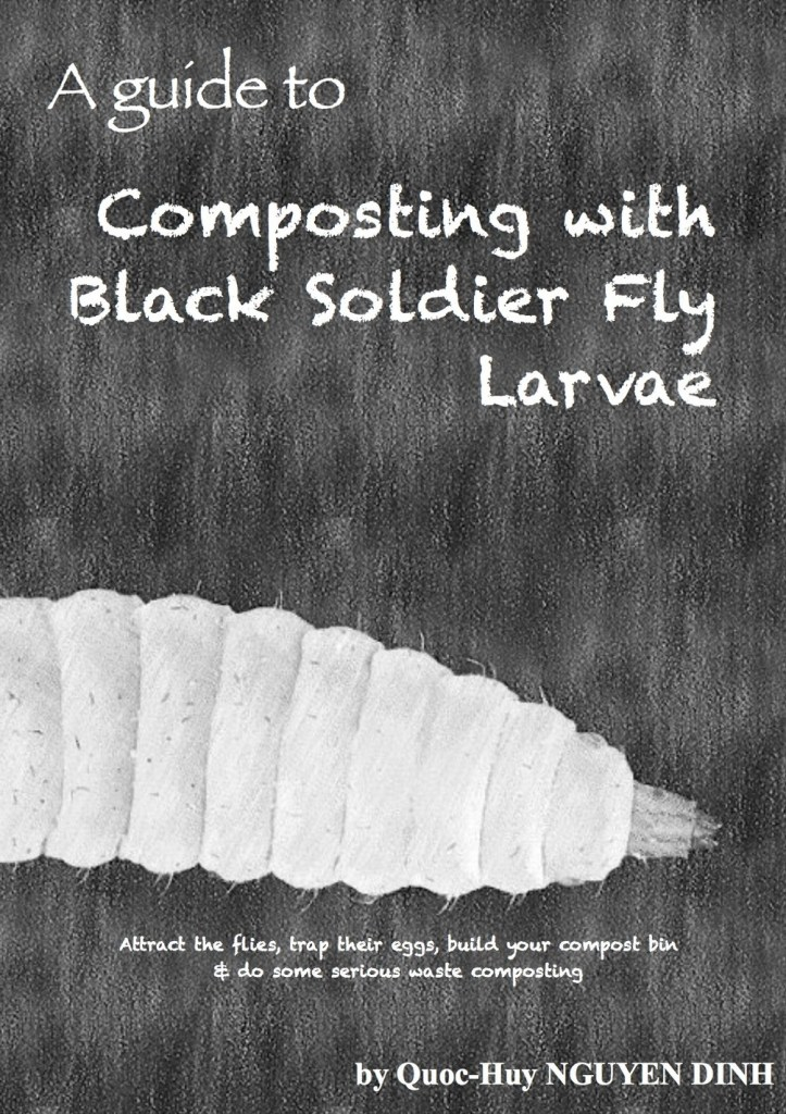 Black Soldier Fly Composting - By Quoc-Huy
