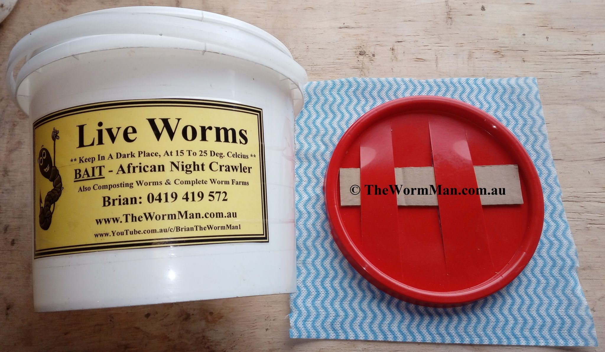 How to make a fishing bait bucket for worms worms for for Fishing worm farm