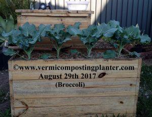3 - Vermicomposting Planter Worm Farm - 290817